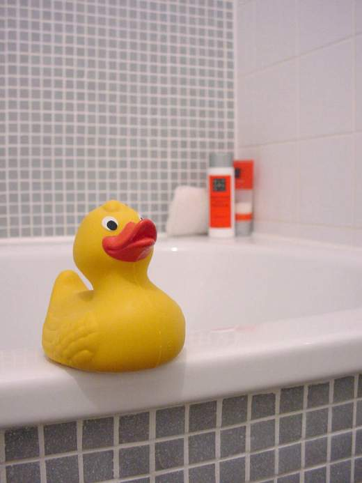 Rubbe duck toy