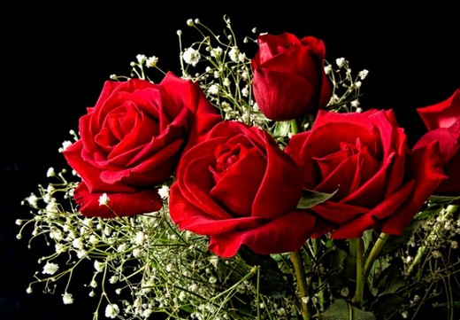Give someone you love a boquet of red roses