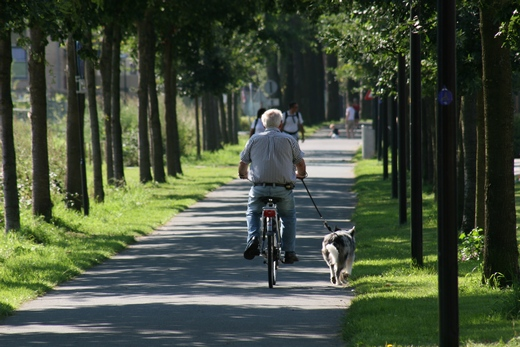 Cycling through park with a dog