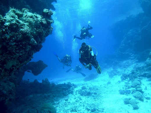 Diving fun in the deep blue sea
