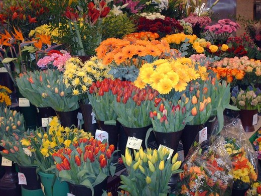 Bouquets of flowers on sale