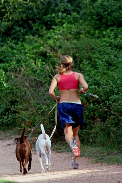 Going for a run with pet dogs